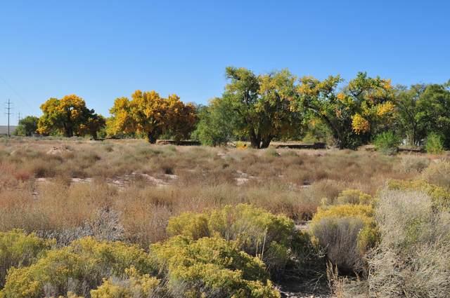 Subd: Gurule Estates Lot: 27A, Los Lunas, NM 87031 (MLS #981140) :: The Bigelow Team / Red Fox Realty
