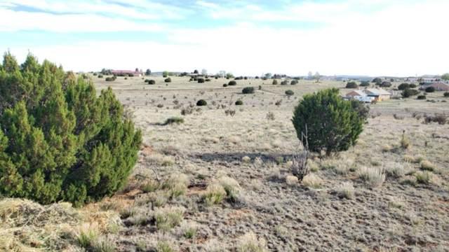 73 W Hill Ranch Road, Edgewood, NM 87015 (MLS #981205) :: Sandi Pressley Team