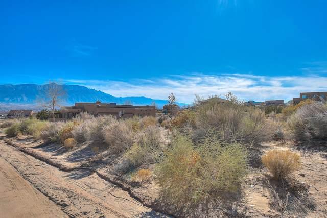 Chapingo Road NE, Rio Rancho, NM 87144 (MLS #981236) :: Sandi Pressley Team