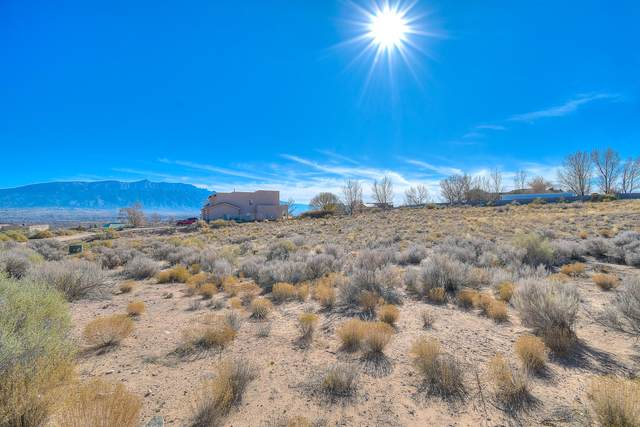 6904 Tampico Road NE, Rio Rancho, NM 87144 (MLS #981238) :: Sandi Pressley Team