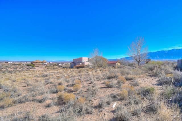 6908 Tampico Road NE, Rio Rancho, NM 87144 (MLS #981242) :: Sandi Pressley Team