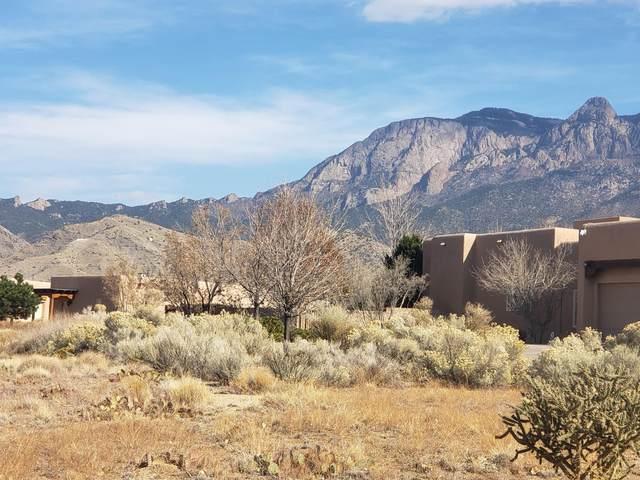 10221 Eagle Rock Avenue NE, Albuquerque, NM 87122 (MLS #981293) :: The Buchman Group