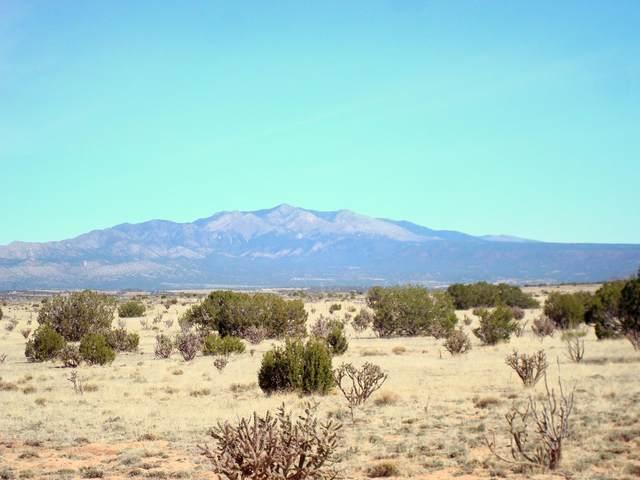 Chupadera Rd, Bernardo, NM 87006 (MLS #981296) :: The Buchman Group