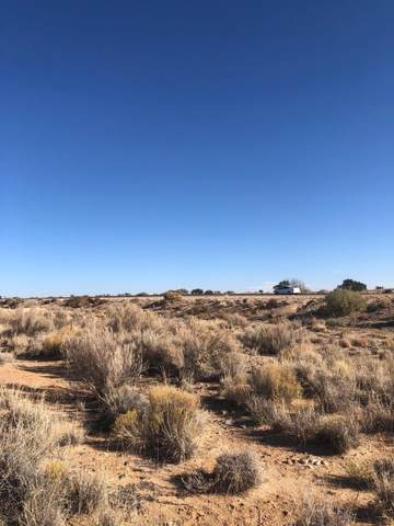 Percha Drive NW #16, Albuquerque, NM 87120 (MLS #981344) :: The Bigelow Team / Red Fox Realty