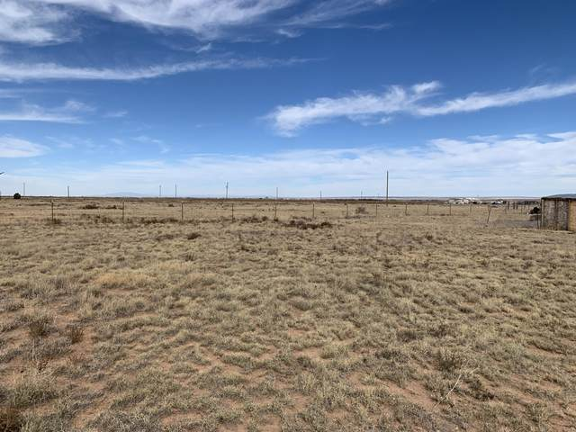 6 Massey Road, Moriarty, NM 87035 (MLS #981385) :: The Bigelow Team / Red Fox Realty