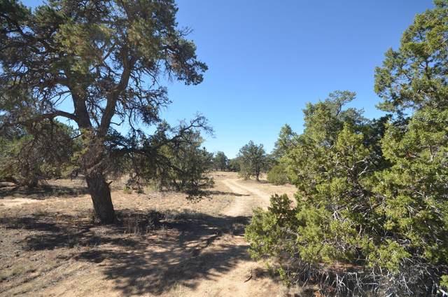 55 Deerfield Road, Ramah, NM 87321 (MLS #981441) :: The Buchman Group