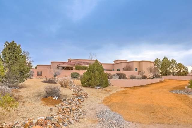 11100 Pino Avenue NE, Albuquerque, NM 87122 (MLS #981461) :: The Buchman Group