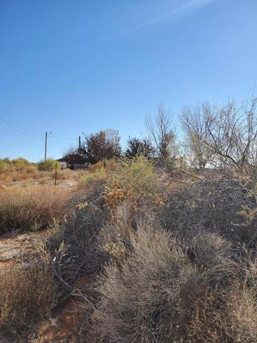 Lorraine Dr, Belen, NM 87002 (MLS #981479) :: The Bigelow Team / Red Fox Realty