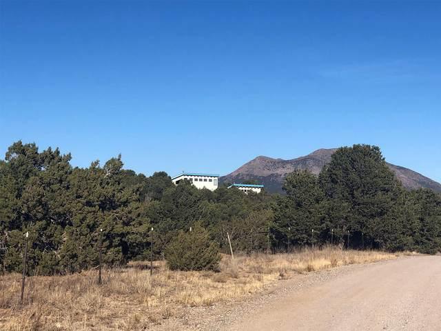 43 Rael Road, Sandia Park, NM 87047 (MLS #981494) :: Berkshire Hathaway HomeServices Santa Fe Real Estate