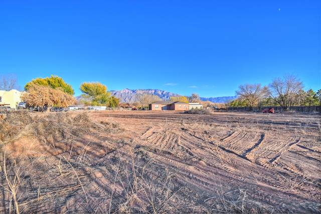 527 Paseo De Dulcelina Road, Corrales, NM 87048 (MLS #981535) :: The Buchman Group