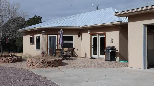 316-A Hop Canyon Road, Magdalena, NM 87825 (MLS #981554) :: Sandi Pressley Team