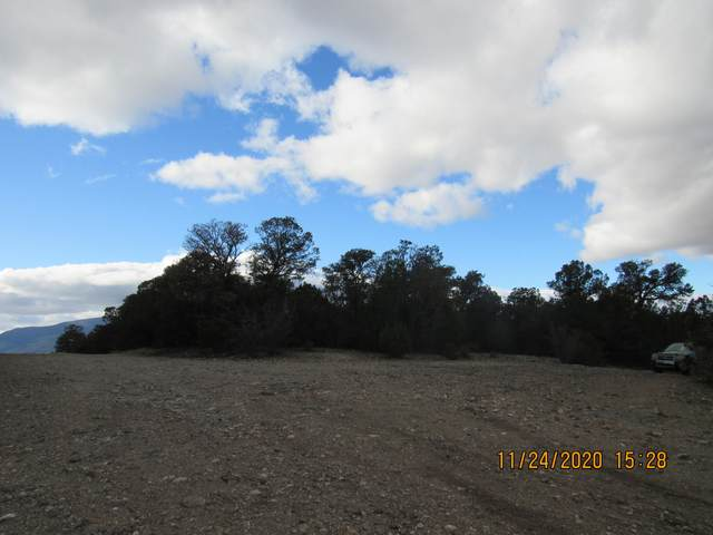 3 Manzano (L58,B6,Fh) Loop, Tijeras, NM 87059 (MLS #981590) :: The Buchman Group