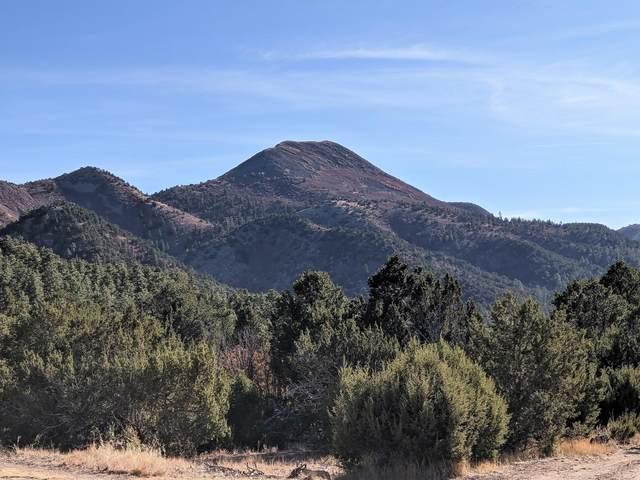 165 Ranchitos, Golden, NM 87047 (MLS #981682) :: Sandi Pressley Team