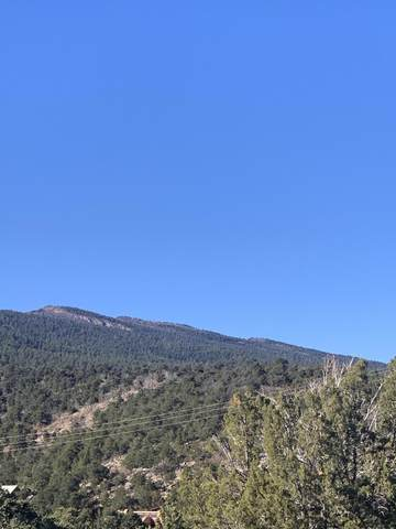 0 Beaver Lane, Cedar Crest, NM 87008 (MLS #981750) :: Campbell & Campbell Real Estate Services