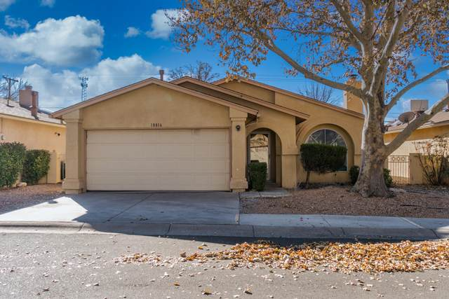 10816 Lagrange Park Drive NE, Albuquerque, NM 87123 (MLS #981765) :: The Buchman Group