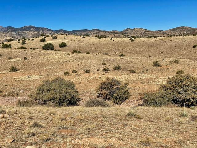 2A Willow Springs Ranch, San Antonio, NM 87832 (MLS #981775) :: The Buchman Group