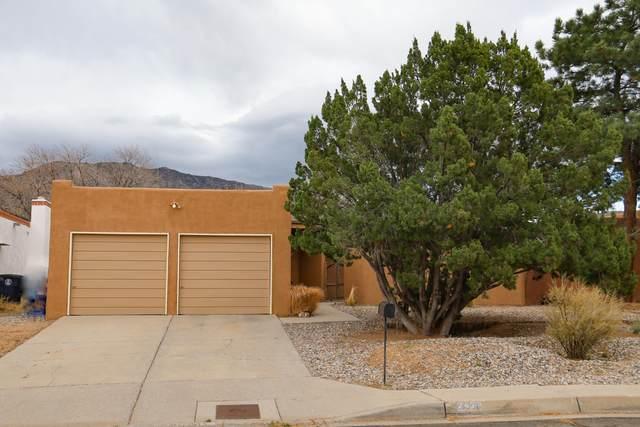 2436 Hiawatha Drive NE, Albuquerque, NM 87112 (MLS #981826) :: The Buchman Group