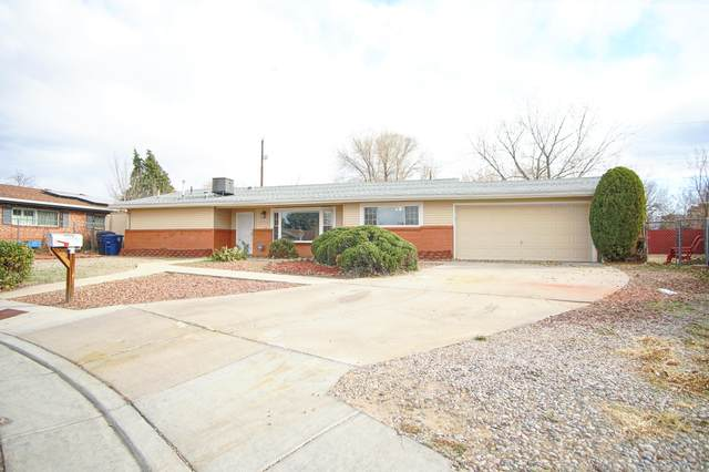 4100 Constance Place NE, Albuquerque, NM 87109 (MLS #981833) :: The Buchman Group
