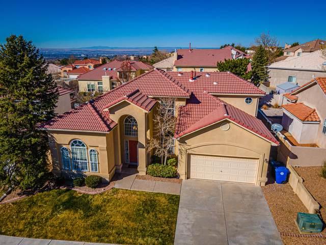 1419 Canyon Rim Drive NE, Albuquerque, NM 87112 (MLS #981880) :: Sandi Pressley Team