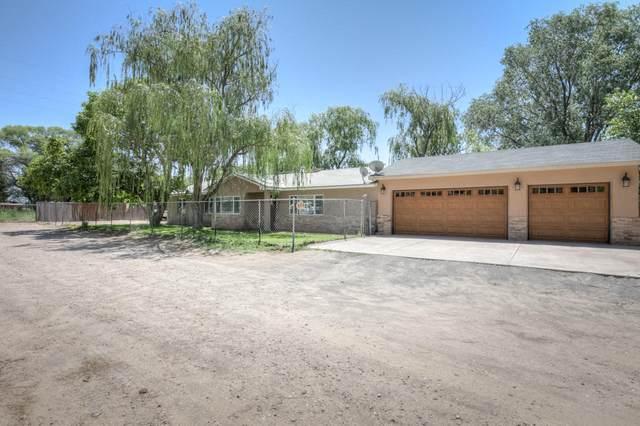 6302 Alvis Drive SW, Albuquerque, NM 87105 (MLS #981883) :: Sandi Pressley Team
