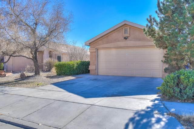 2827 Butch Cassidy Drive SW, Albuquerque, NM 87121 (MLS #981887) :: Sandi Pressley Team