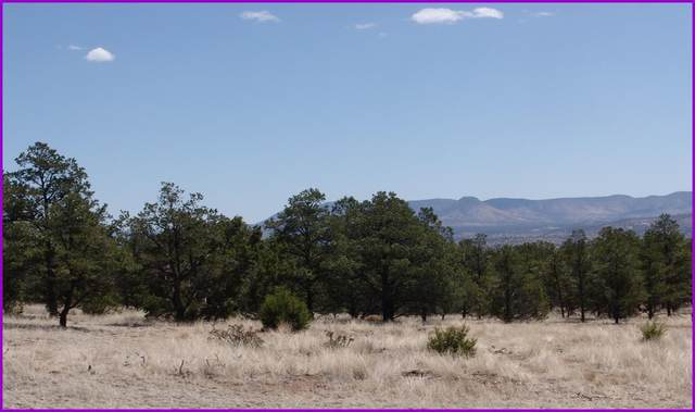 1 Last Frontier Trail, Datil, NM 87821 (MLS #981963) :: The Buchman Group