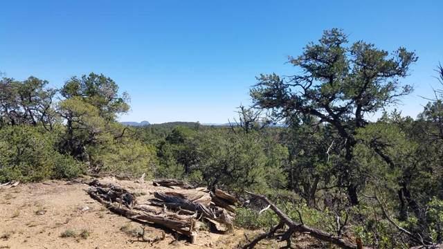 23 Sam Tank Road, Pie Town, NM 87827 (MLS #981983) :: The Buchman Group