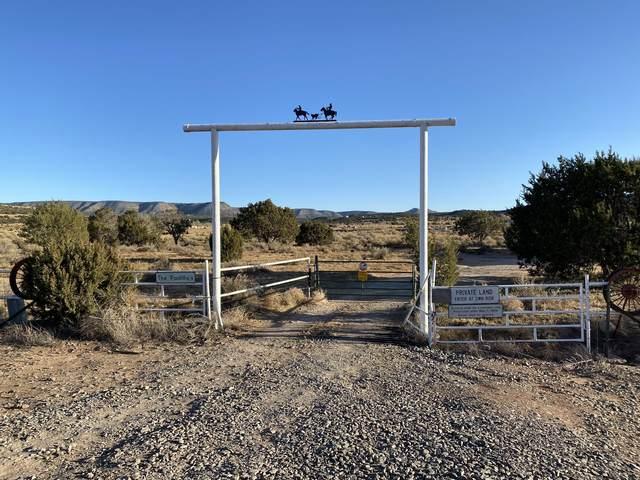 Cottage Loop, Mountainair, NM 87036 (MLS #982032) :: The Buchman Group