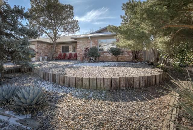 11800 Golden Gate Avenue NE, Albuquerque, NM 87111 (MLS #982079) :: Berkshire Hathaway HomeServices Santa Fe Real Estate