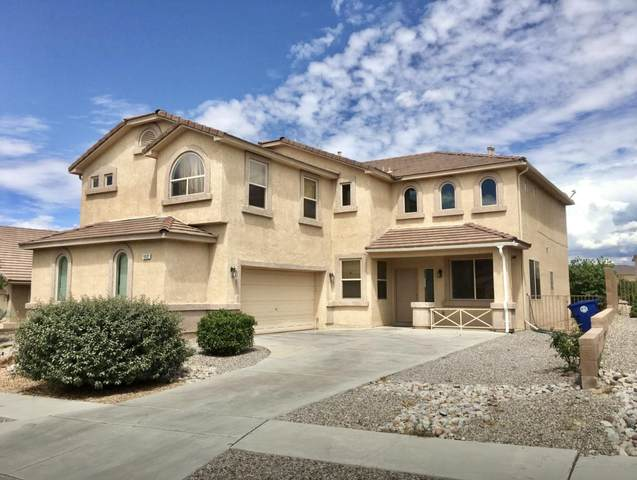 10532 Coyote Canyon Place NW, Albuquerque, NM 87114 (MLS #982084) :: The Buchman Group