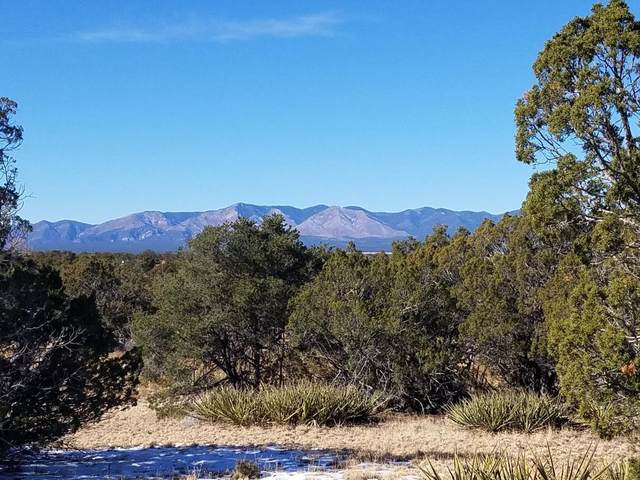 Juniper Avenue, Mountainair, NM 87036 (MLS #982122) :: Campbell & Campbell Real Estate Services