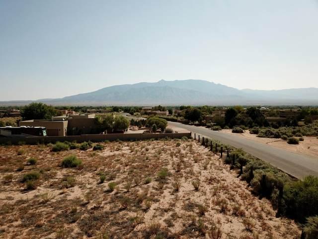 112 Todos Juntos Road, Corrales, NM 87048 (MLS #982225) :: The Buchman Group