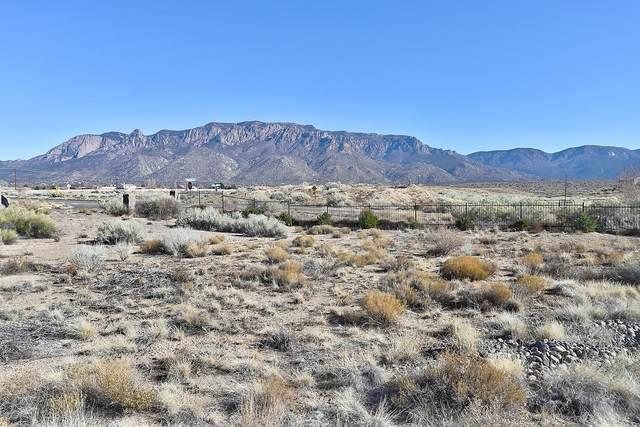 Palomas Avenue NE, Albuquerque, NM 87122 (MLS #982294) :: The Buchman Group