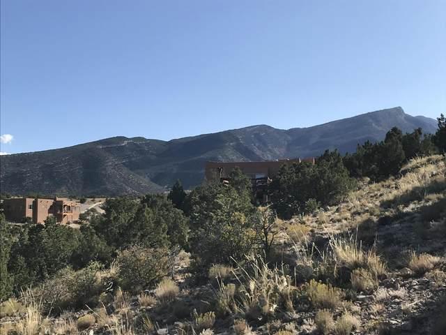 Evergreen Drive, Placitas, NM 87043 (MLS #982478) :: The Buchman Group
