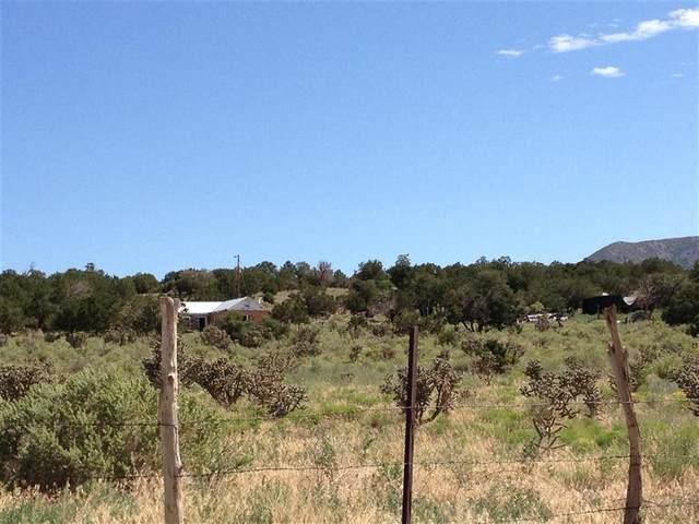 201 Entranosa Road, Edgewood, NM 87015 (MLS #982505) :: Keller Williams Realty