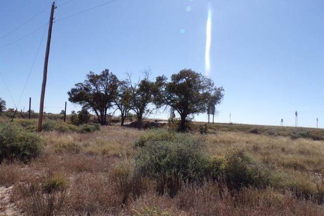 0 Abrahames Road, Moriarty, NM 87035 (MLS #982521) :: The Buchman Group
