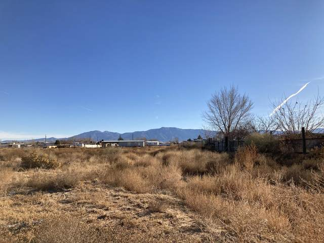 Booth Walker Court, Los Lunas, NM 87031 (MLS #982620) :: The Bigelow Team / Red Fox Realty