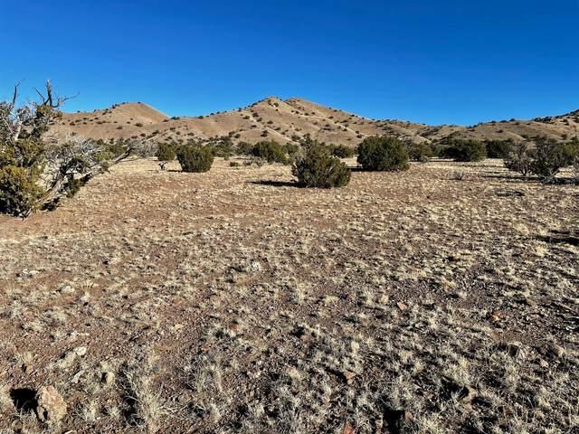 64 Abbe Springs Ranches, Magdalena, NM 87825 (MLS #982697) :: Berkshire Hathaway HomeServices Santa Fe Real Estate