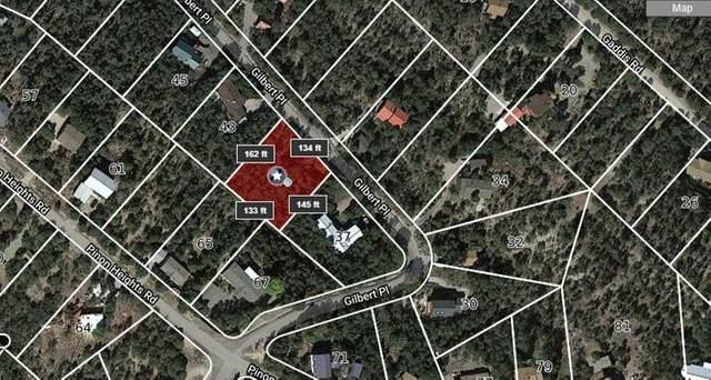 39 Gilbert Place, Sandia Park, NM 87047 (MLS #982822) :: The Buchman Group