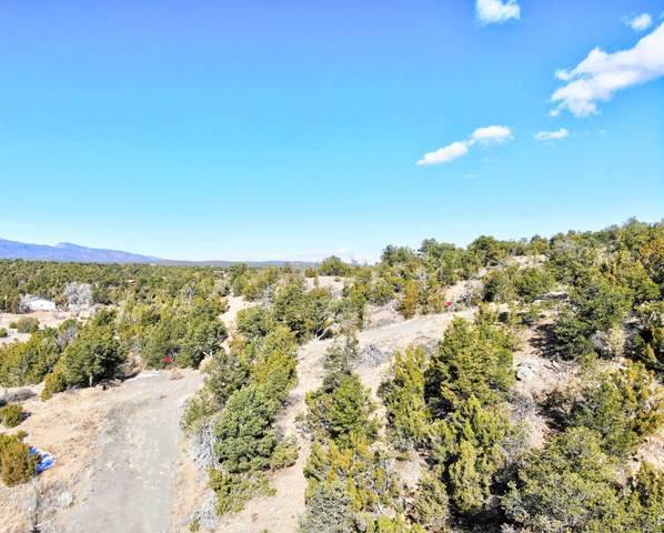 55 Riders Road, Sandia Park, NM 87047 (MLS #982829) :: The Buchman Group
