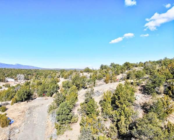 55 Riders Road, Sandia Park, NM 87047 (MLS #982829) :: The Bigelow Team / Red Fox Realty
