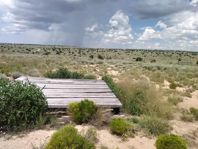 928 Windmill Road, Carrizozo, NM 88301 (MLS #983022) :: The Buchman Group
