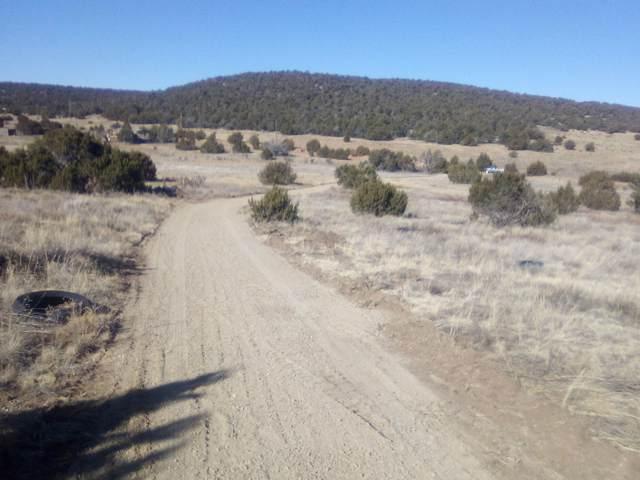 Vidalia Road, Edgewood, NM 87015 (MLS #983069) :: Keller Williams Realty
