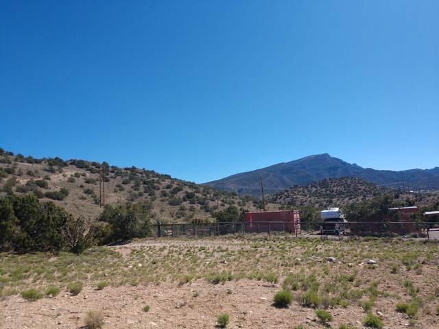 13 Camino De Las Brisas, Placitas, NM 87043 (MLS #983203) :: Campbell & Campbell Real Estate Services