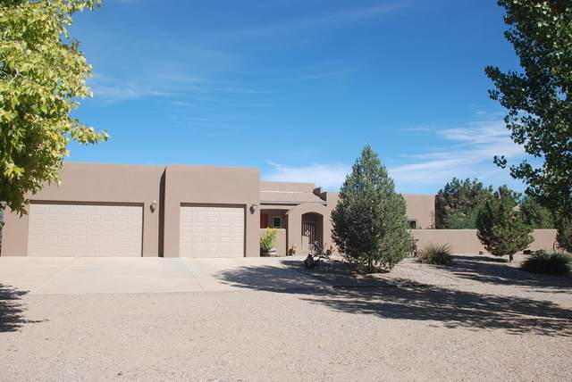 35 Berry Hill Farms Road, Los Lunas, NM 87031 (MLS #983221) :: Keller Williams Realty