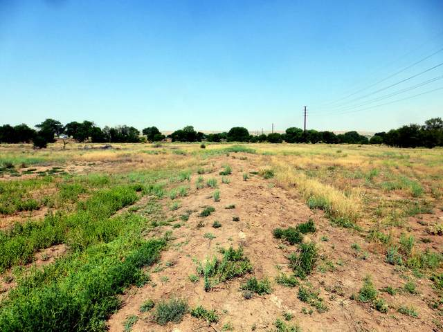 Pueblitos Road, Belen, NM 87002 (MLS #983228) :: The Buchman Group