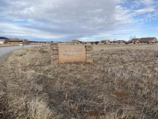 44 Northland Meadows Drive, Edgewood, NM 87015 (MLS #983270) :: Keller Williams Realty