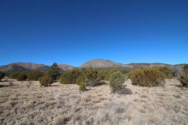 6 Vista Manzanos, Edgewood, NM 87015 (MLS #983293) :: Keller Williams Realty