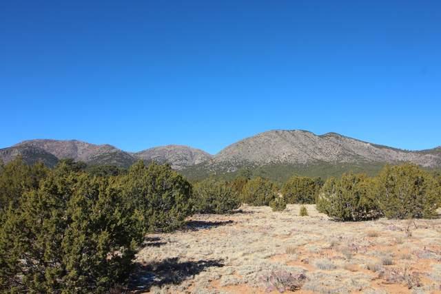 38 Camino Monte Azul, Edgewood, NM 87015 (MLS #983294) :: Keller Williams Realty