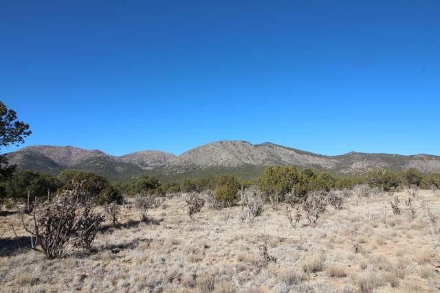 11 Monte Sur, Edgewood, NM 87015 (MLS #983296) :: Keller Williams Realty